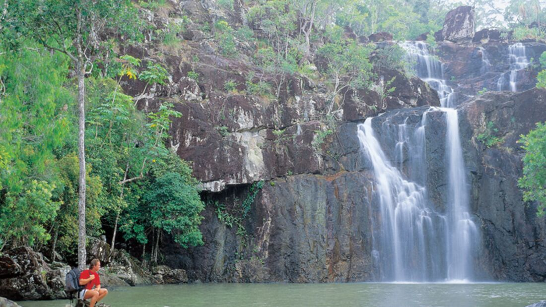 OD-Whitsundays-cedar-creek-falls-580px (jpg)