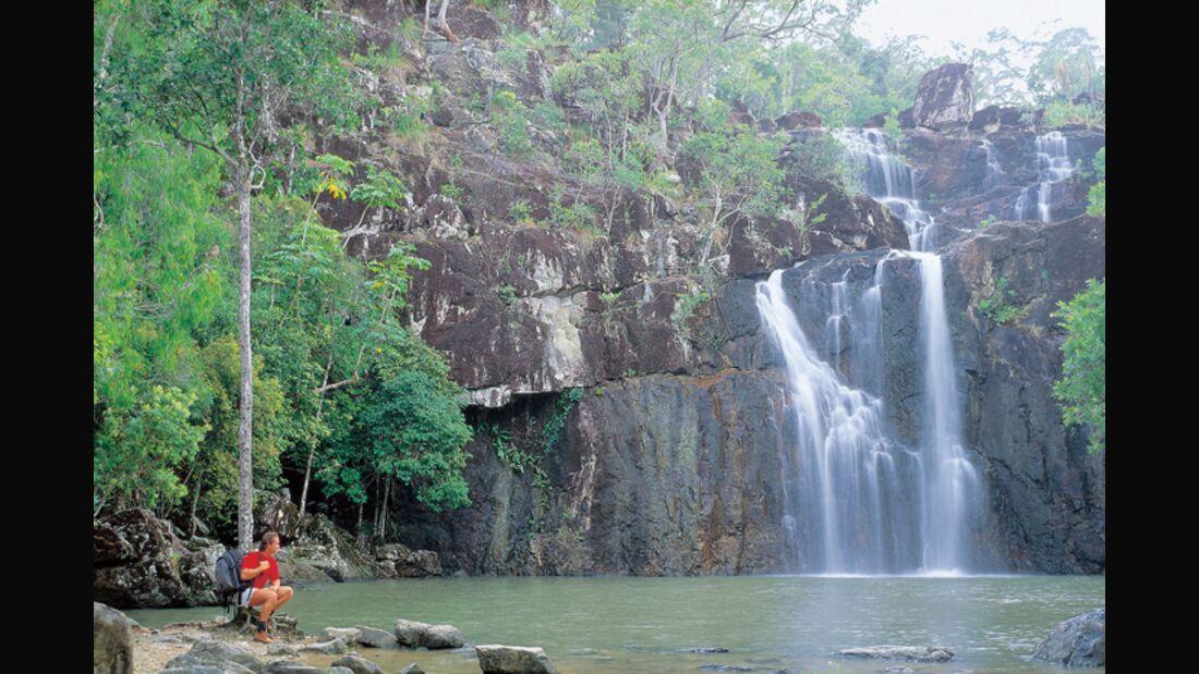 OD-Whitsundays-cedar-creek-falls-580px (jpg)