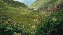 OD Zu Fuß über die Alpen - alle Infos zum Alpencross 2
