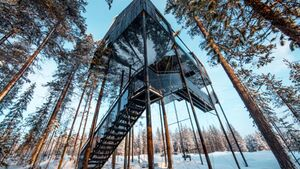 OD-treehotel-schweden-7th-room-1 (jpg)
