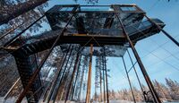 OD-treehotel-schweden-7th-room-7-Johan Jansson (jpg)