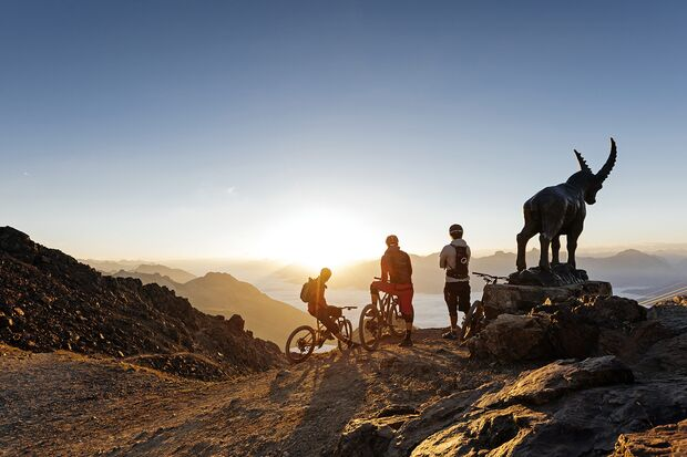 Od 052019 Sommer Bergerlebnisse Oberengadin Mountainbike Steinbock