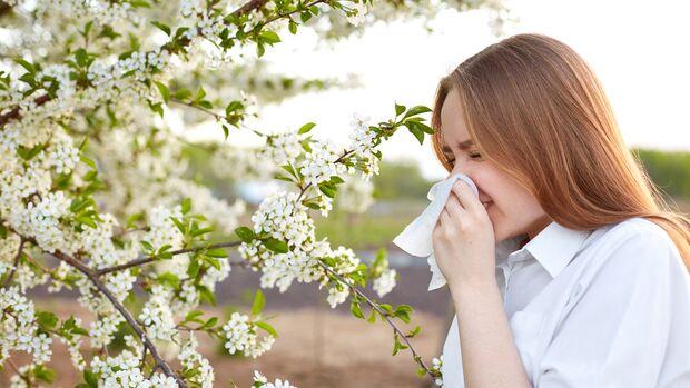 Pollenflug im Frühjahr