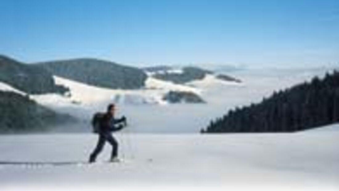 Schwarzwald Aufmacher