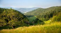 Schwarzwald Kinzigtal