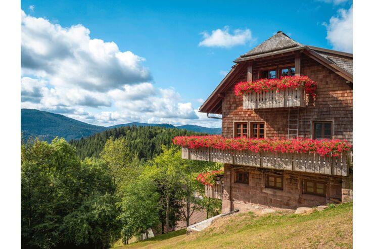 Schwarzwald Renchtalsteig