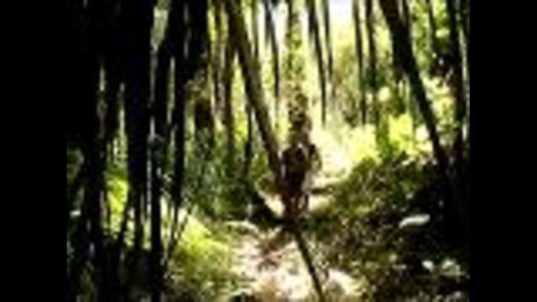 Te Araroa-Trek in Neuseeland - Impressionen