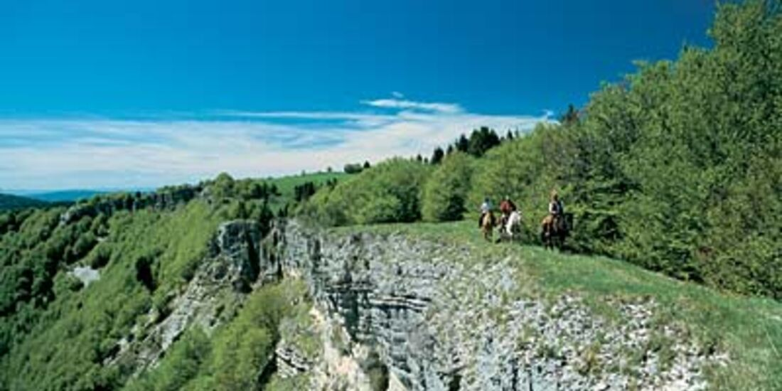 Tour 4: Per Pferd durchs Hochjura