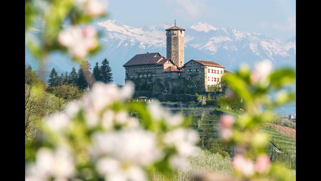 Val di Non - Castel Valer - Meleti in fiore