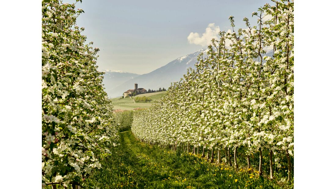 Val di Non - Meleti - Castel Valer