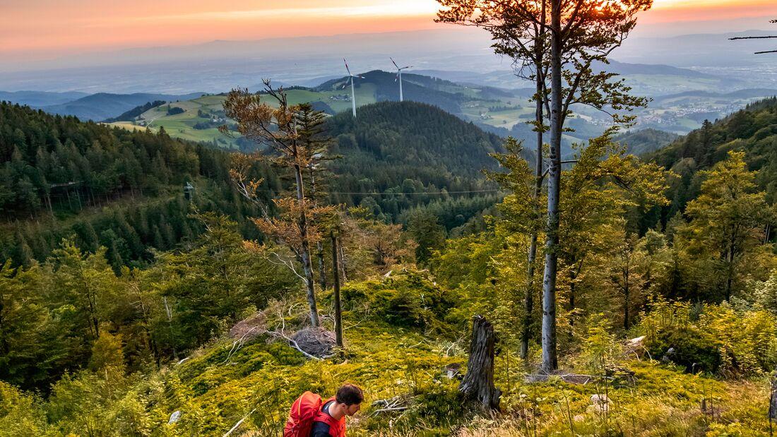 Wandern im Breisgau - Schwarzwald