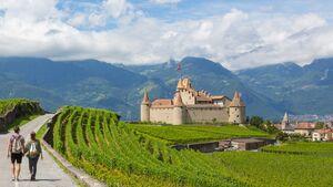 Weingebiet Waadt - Genfersee - Schweiz