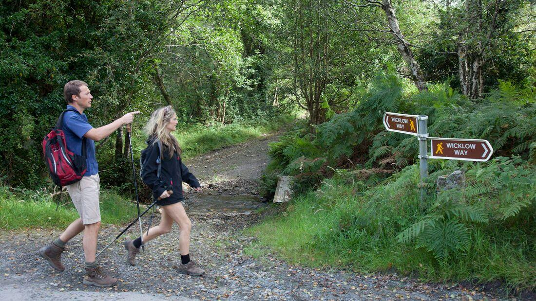 Wicklow Way, Irland