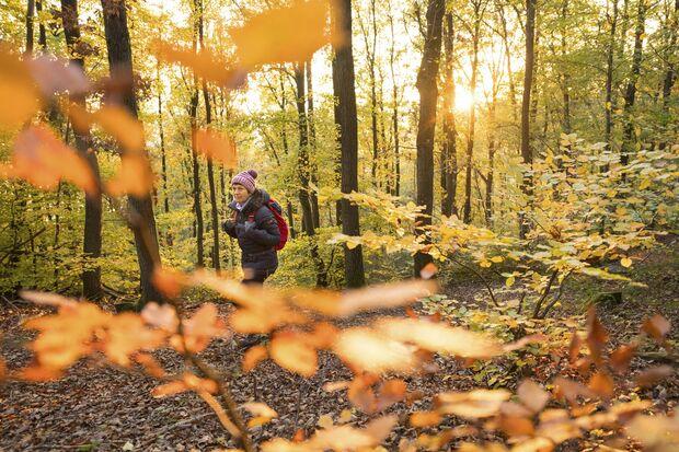 Wilde Wege rund um Monschau in der Eifel