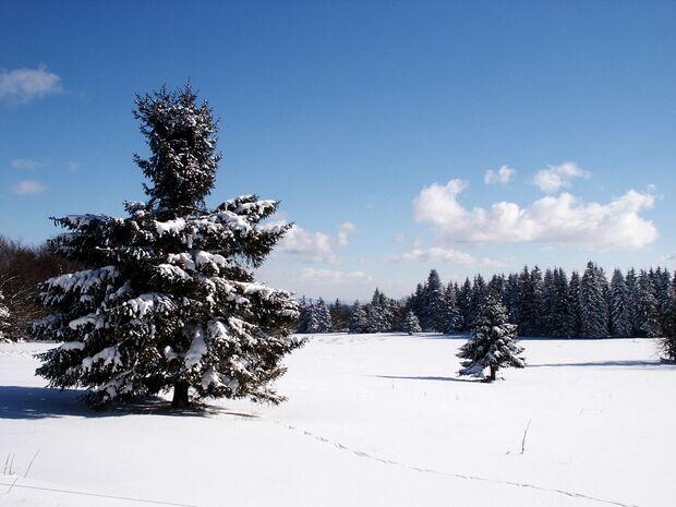 Winter-Landschaft-Ernst-Reisig_pixelio (jpg)