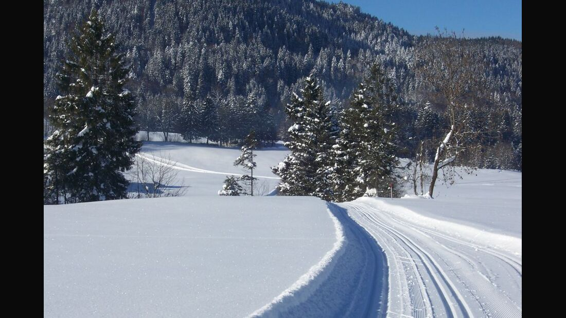 Winterlandschaft im Inzeller Moor 4