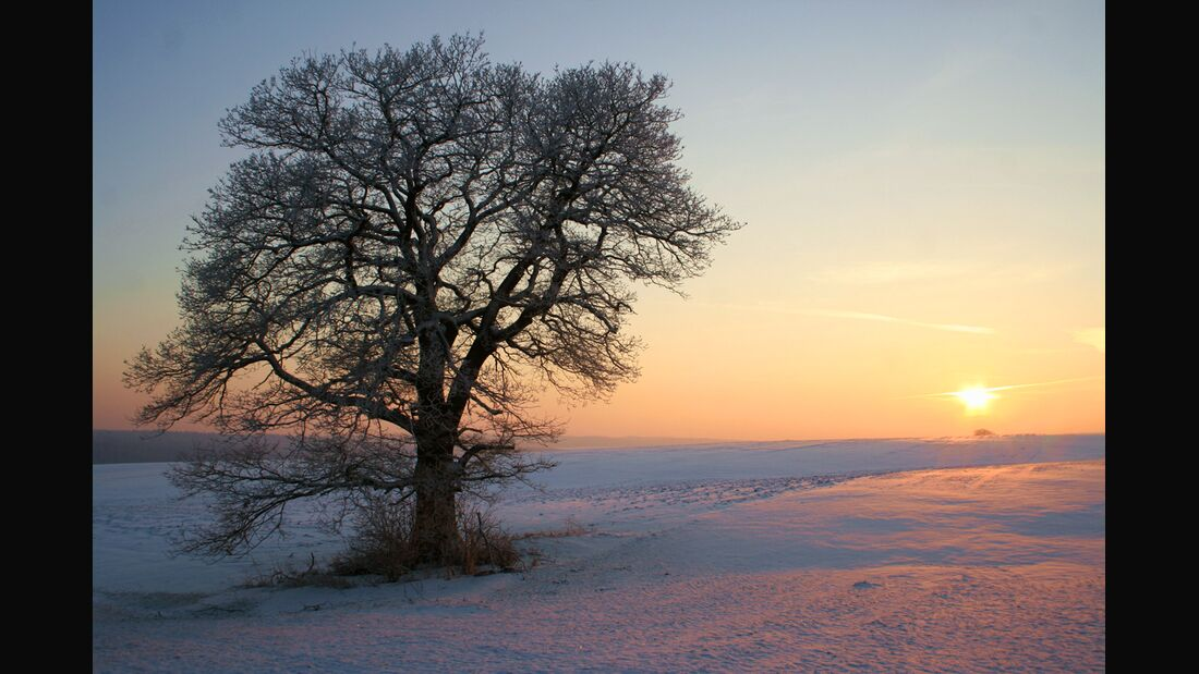 Wintermorgen_by_Marco-Barnebeck(Telemarco)_pixelio (jpg)