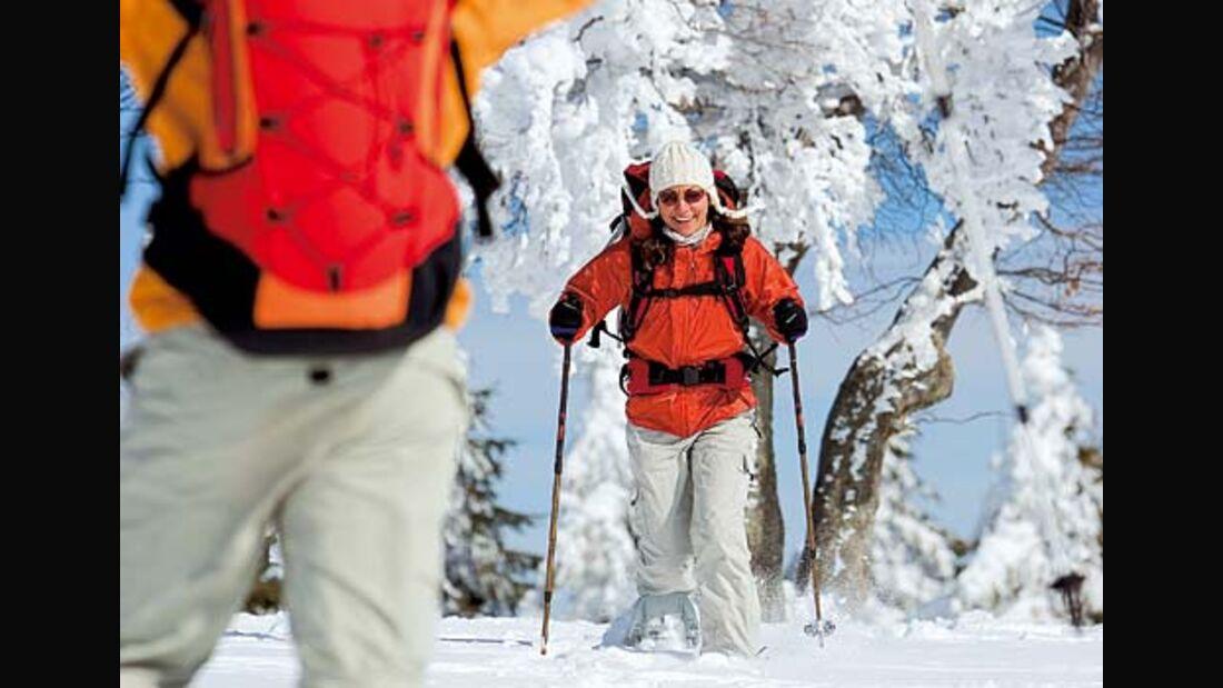 Wintertouren durch den Südschwarzwald