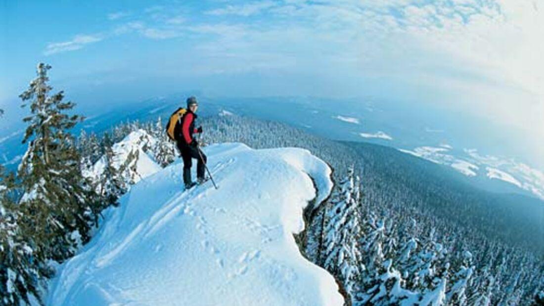 Wintertouren im Bayerischen Wald