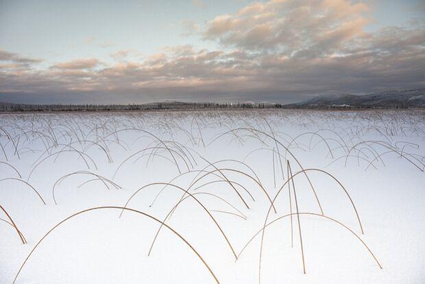Yukon Arctic Ultra - das kälteste Rennen der Welt 21