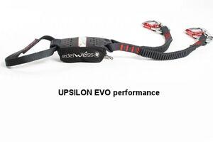 edelweiss-upsilon-evo-performance (jpg)