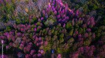 kl-ims-top100-bergbilder-hansa-tangmanpoowadol-02-01-dji-ims-1338 (jpg)