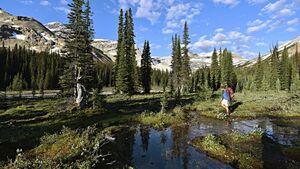 od-0117-kanada-yoho-national-park-president-range (jpg)