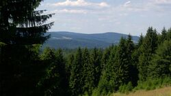 od-0715-thueringerwald-schneekopf (jpg)