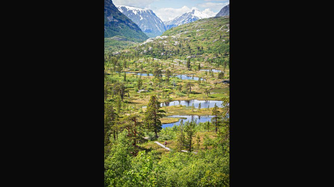 od-0917-norwegen-tafjordfjell-13 (jpg)
