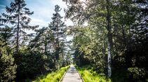 od-0918-baden-wurttemberg-bw-special-nordschwarzwald-baumwipfelpfad-weitere-04 (jpg)