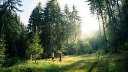 od-0918-baden-wurttemberg-bw-special-schwarzwald-trekking-03 (jpg)