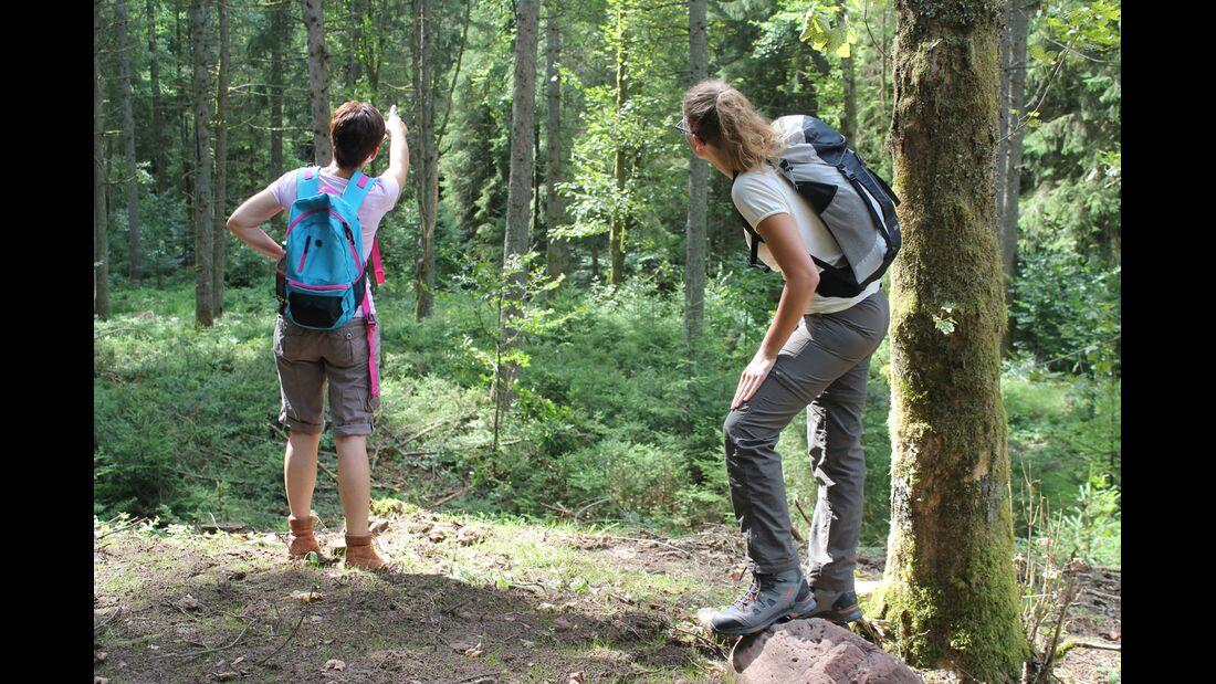 od-0918-baden-wurttemberg-bw-special-schwarzwald-trekking-weitere-06 (jpg)