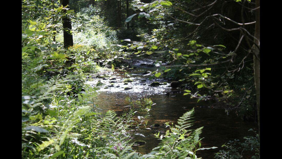 od-0918-baden-wurttemberg-bw-special-schwarzwald-trekking-weitere-07 (jpg)