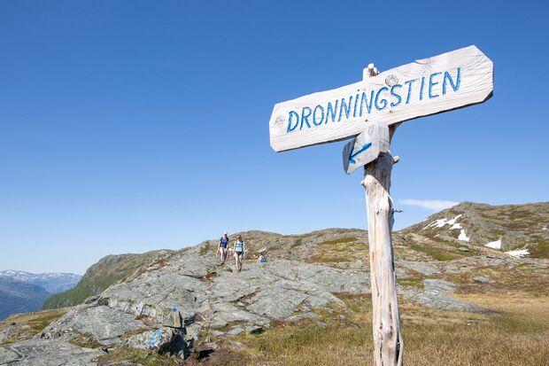 od-1118-fjordline-04 (jpg)