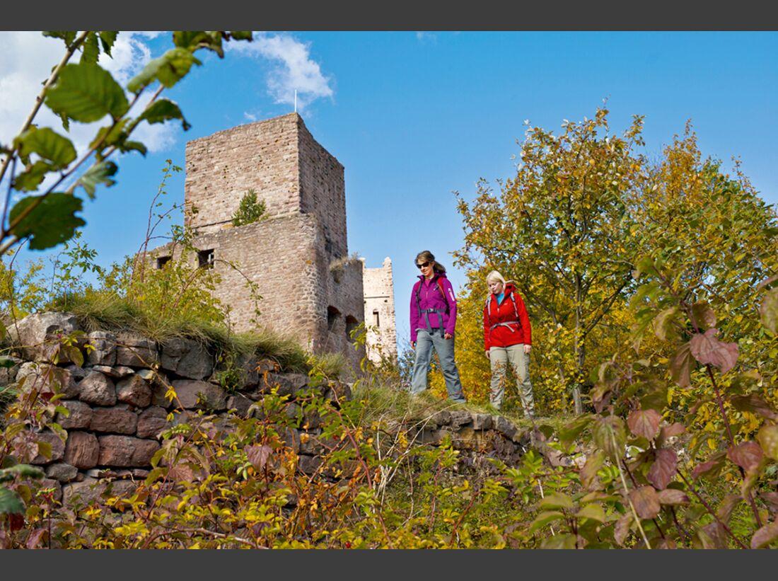 od-2012-elsass-vogesen-frankreich-herbst-(12) (jpg)