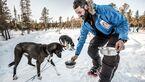 od-2015-fjaellraven-Polar-hundeschlitten-3 (jpg)