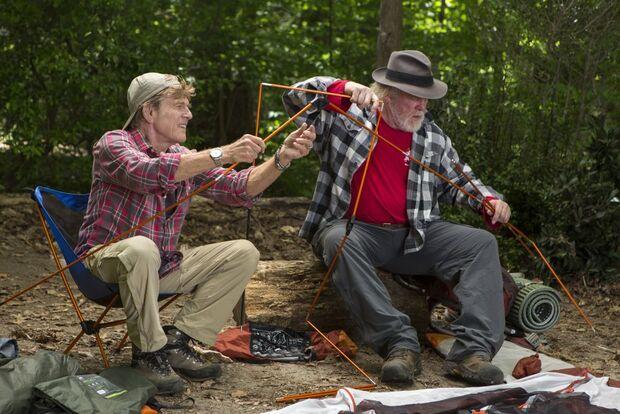 od-2015-picknick-mit-baeren-AlamodeFilm5 (jpg)