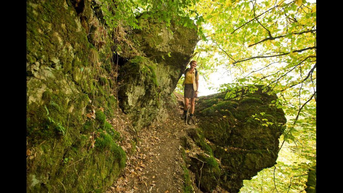 od-2016-Westerwald-weltendepfad (jpg)