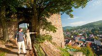od-2016-rheinlandpfalz-Pfaelzer-Hoehenweg-004b (jpg)