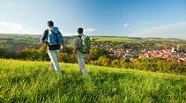 od-2016-rheinlandpfalz-Pfaelzer-Hoehenweg-004d (jpg)