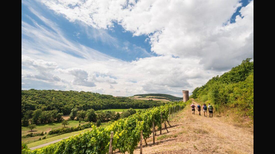 od-2016-rheinlandpfalz-rheinhessen-Hiwweltour Heideblick2 (jpg)
