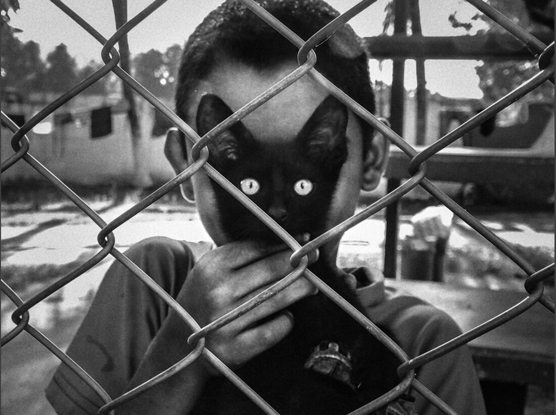 od-2017-cewe-fotowettbewerb-cats-eyes-arek-rataj (jpg)