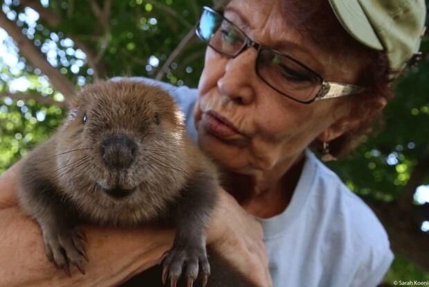 od-2019-banff-filmfestival-the-beaver-believers-sarah-koenigsberg (jpg)