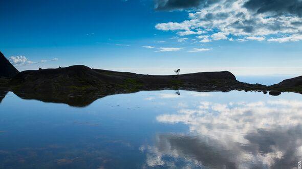 od-banff-2015-Danny-MacAskill-The-Ridge-1_webcredit (jpg)