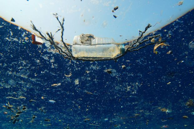 od-international-ocean-film-tour-60-a-plastic-ocean (jpg)