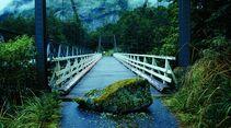 od_neuseeland_milford sound rakiura track (jpg)