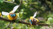 outdoor basteln kinder bastelbuch natur bienen