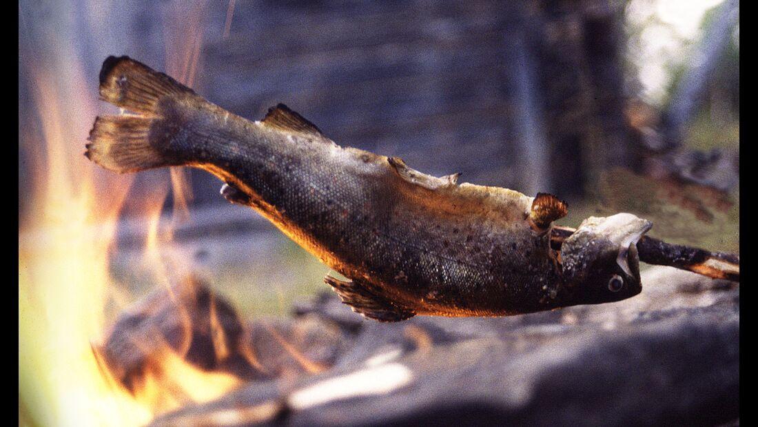 outdoor visit finland fischen grillen angler
