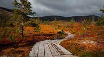 outdoor visit finland herbstlich fjells