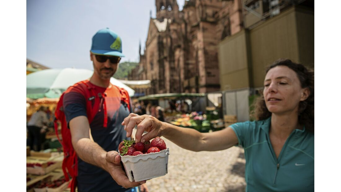 outdoor wandern freiburg erdbeeren